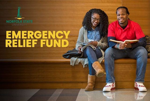 emergency relief fund graphic